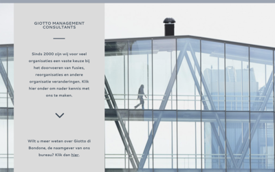 Giotto management consultants